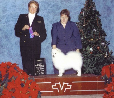 AKC-CH UKC-GRCH Sycamore's Touch of Frost